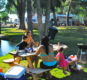 Cherry Valley Lakes Resort - Family BBQ Area