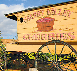 Cherry Valley Lakes one of the best campgrounds near Palm Springs